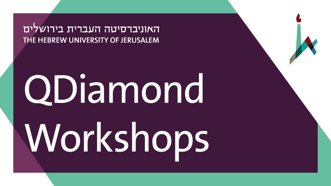 QDiamond Workshops
