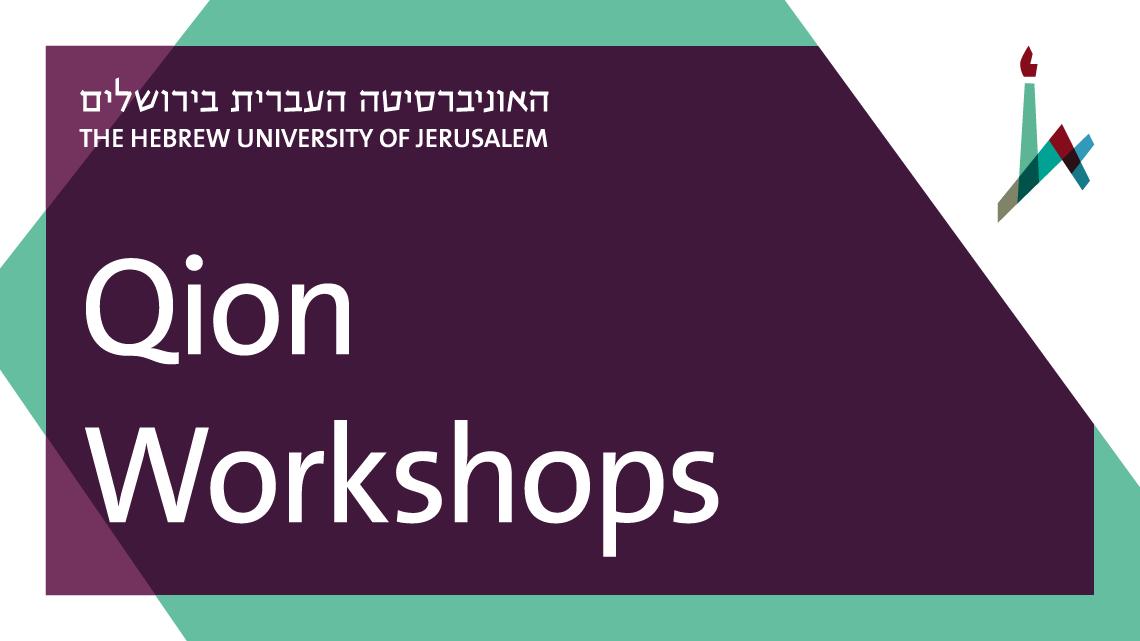 Qion Workshops